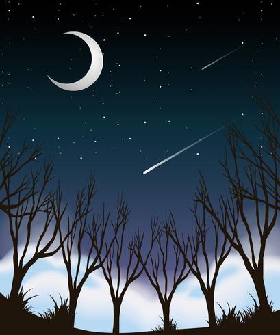 Nattsky skogscen vektor