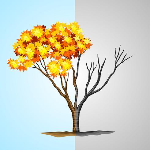 Trä halv med löv och halv utan vektor