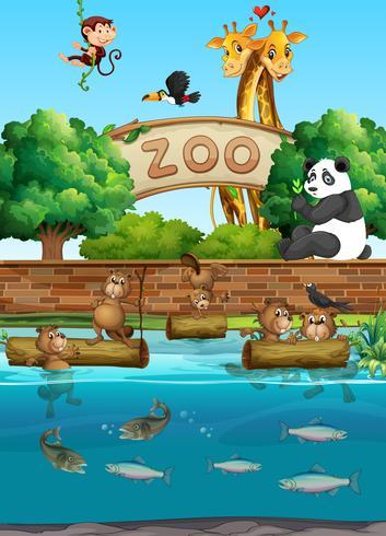 Szene im Zoo mit vielen wilden Tieren vektor