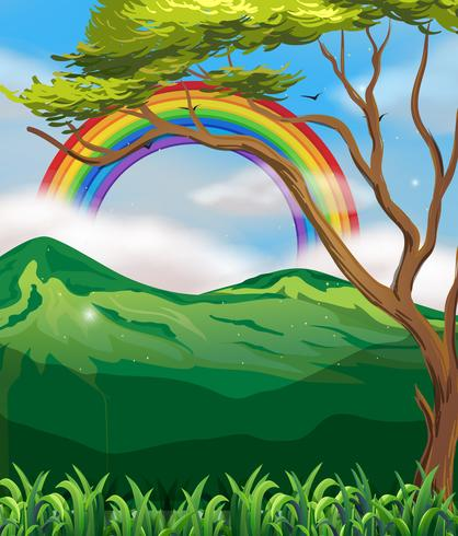 Schöner grüner Berg und Regenbogen vektor