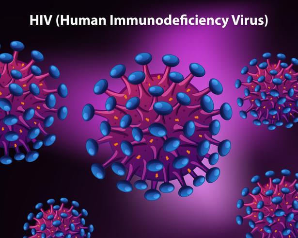 Diagramm, das menschliches Immunodefizienzvirus zeigt vektor