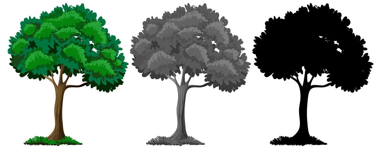 Satz unterschiedliche Baumauslegung vektor