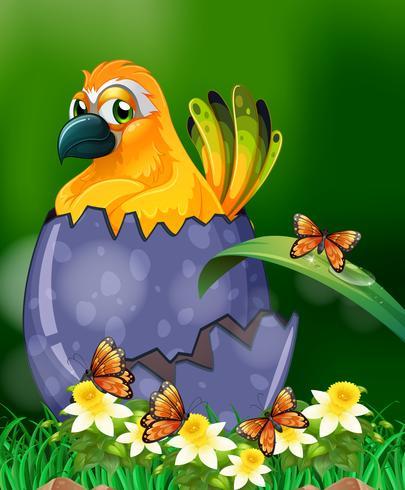 Gelber Vogel, der Ei im Garten ausbrütet vektor
