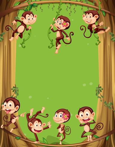Border design med apor på trädet vektor