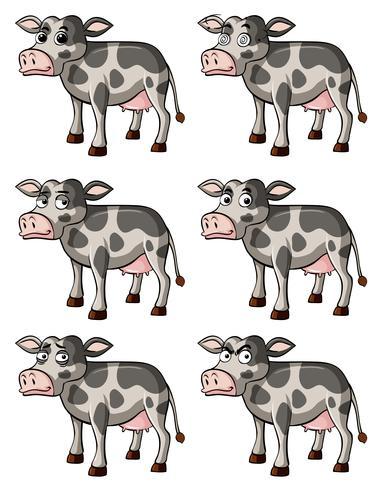 Ko med olika ansiktsuttryck vektor