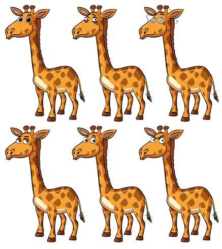 Giraffe mit verschiedenen Emotionen vektor
