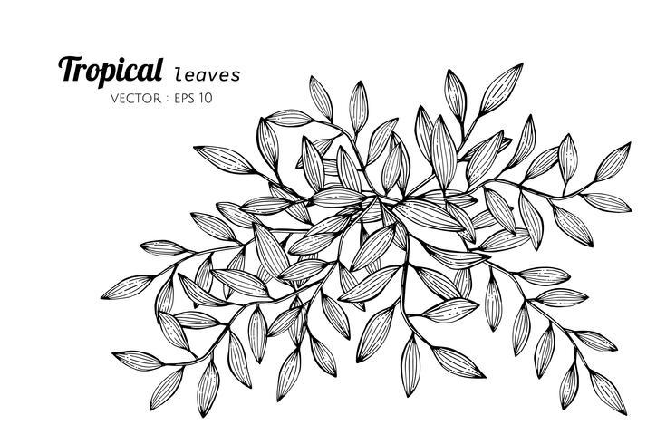 Tropiska löv ritande illustration. vektor