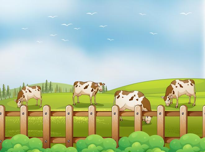 Ein Bauernhof mit Kühen vektor
