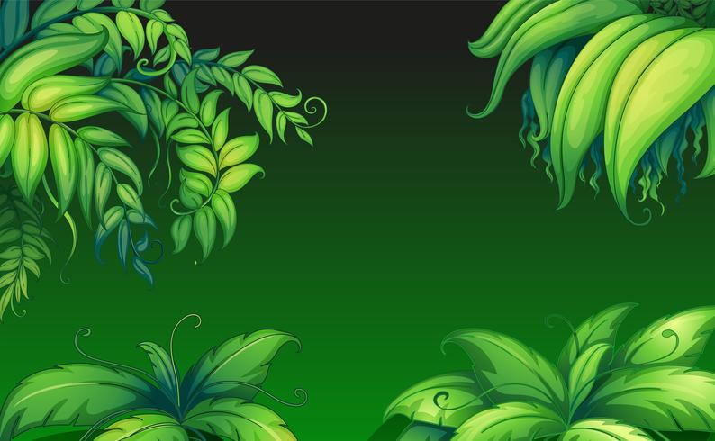 Gröna bladiga växter vektor