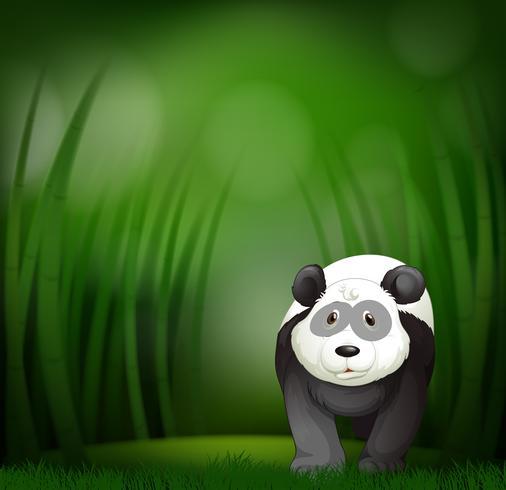 En panda på grön bambu bakgrund vektor