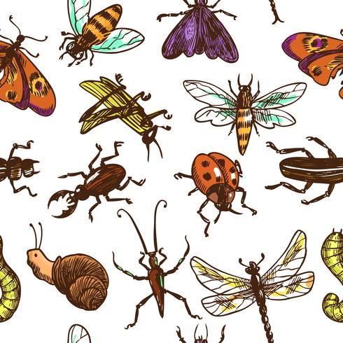 Insekter skissar sömlös mönsterfärg vektor