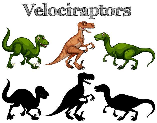 Velociraptorer och silhuetter på vit bakgrund vektor