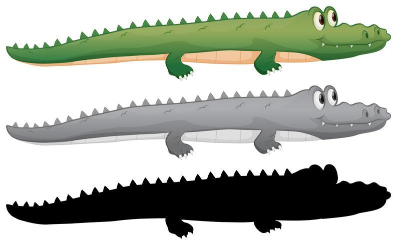 Krokodil-Zeichen vektor