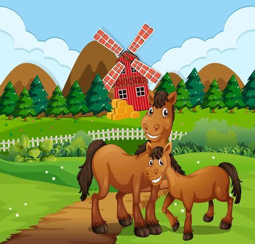 Häst på gårdens landskap vektor