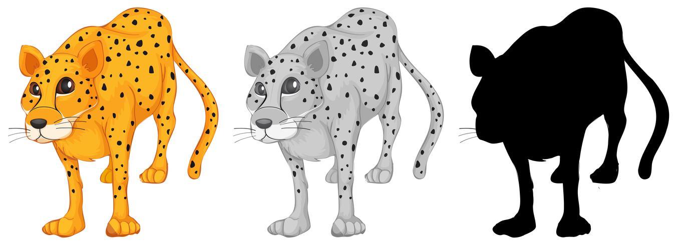 Uppsättning leopard karaktär vektor