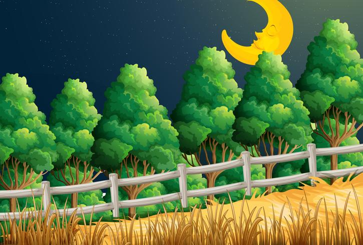 En vy över den sovande månen vid djungeln vektor