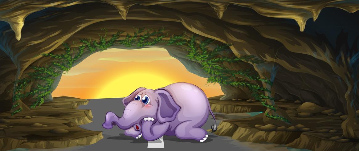 En rädd elefant mitt på vägen vektor