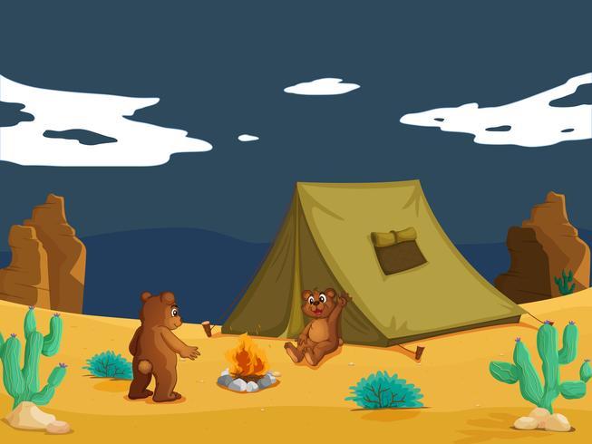 björnar camping vektor