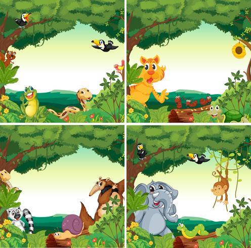 Djur och skogar vektor