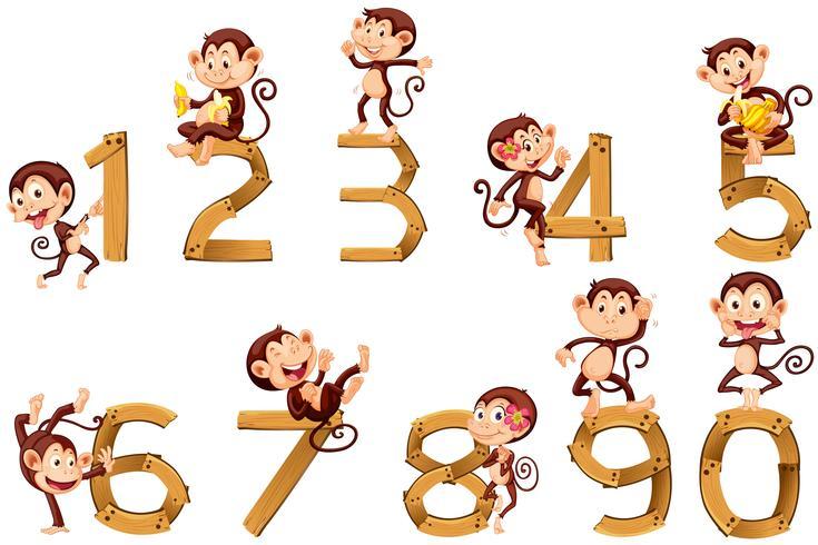 Nummer ett till tio med apor vektor
