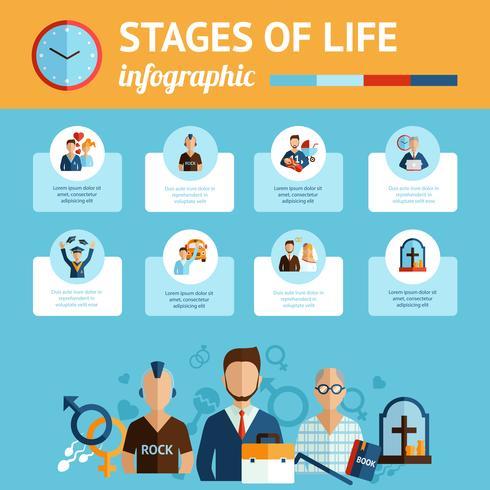 stadier av livets infografiska rapportutskrift vektor