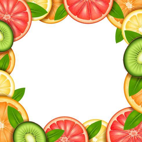 Frucht-Rahmen-Illustration vektor