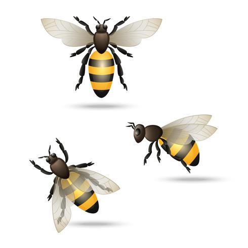 Bienen-Icons gesetzt vektor