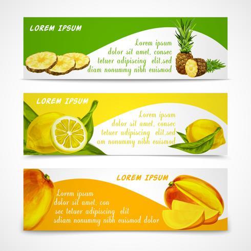 Tropische Früchte Banner gesetzt vektor