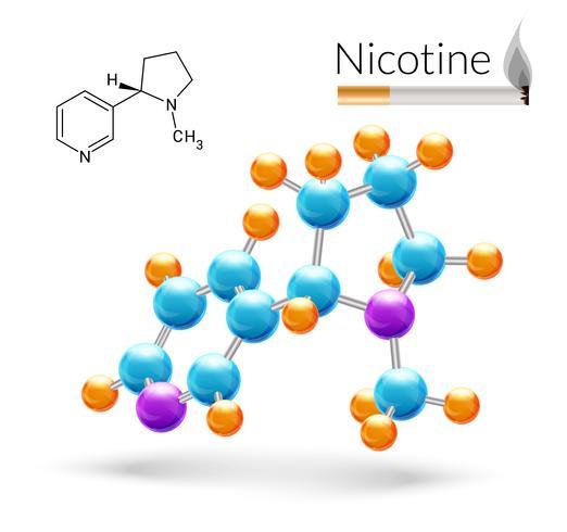 Nikotinmolekyl 3d vektor