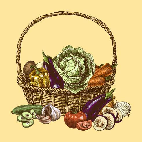 Grönsaker skissa färg vektor