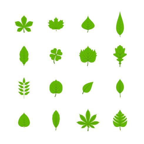 Flache Ikonen der grünen Blätter eingestellt vektor