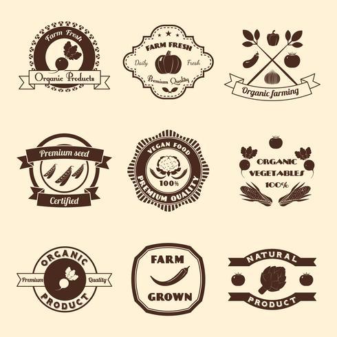 Gemüse-Label-Set vektor