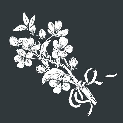 Blühender Baum Hand gezeichneter botanischer Blütenniederlassungsblumenstrauß auf schwarzem Hintergrund. Vektor-illustration vektor