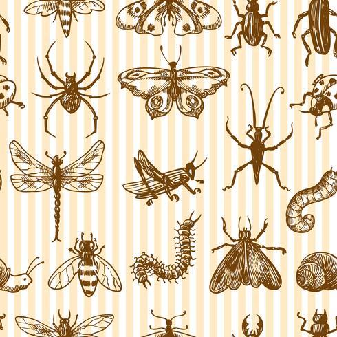 Insekter skiss sömlösa mönster monokrom vektor