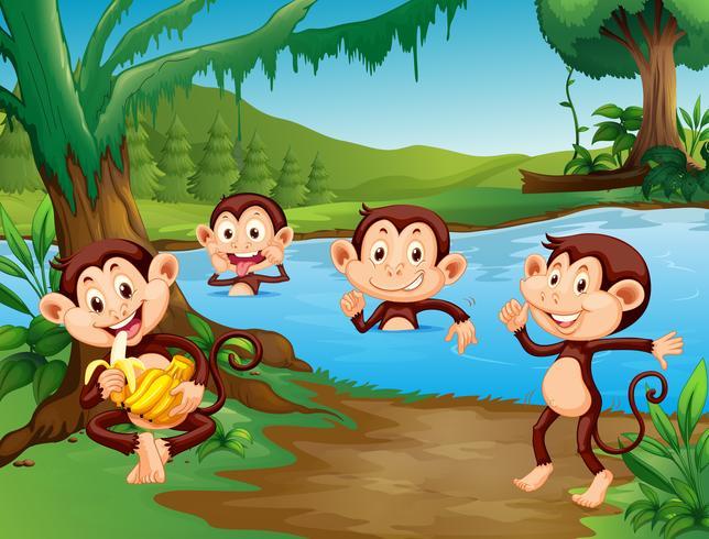 Affe, der am See spielt vektor