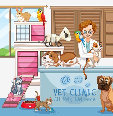 Veterinärläkare med katter och hundar på kliniken vektor