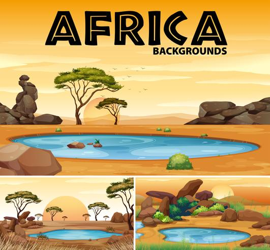 Afrika bakgrunder med små dammar och träd vektor