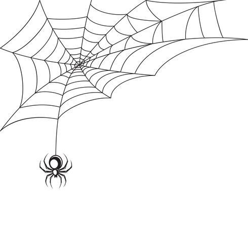 Spindel webb wallpaper vektor