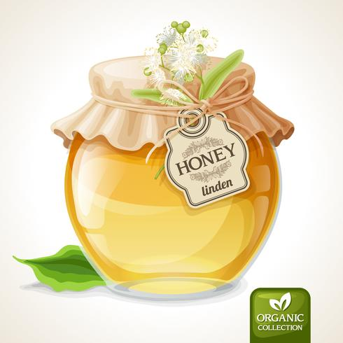 Linden honung burk vektor