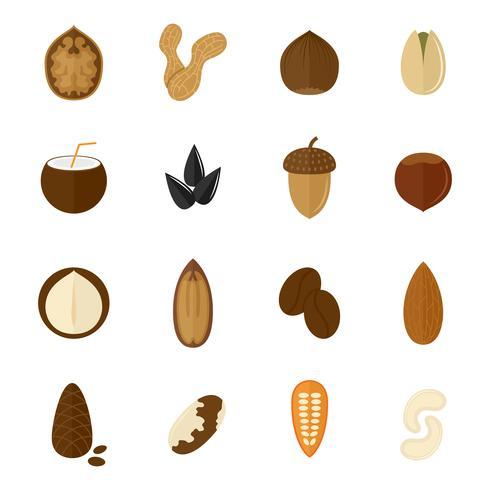 Set av nötter ikoner vektor