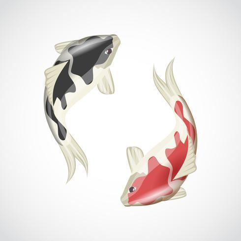 Koi fisk illustration vektor