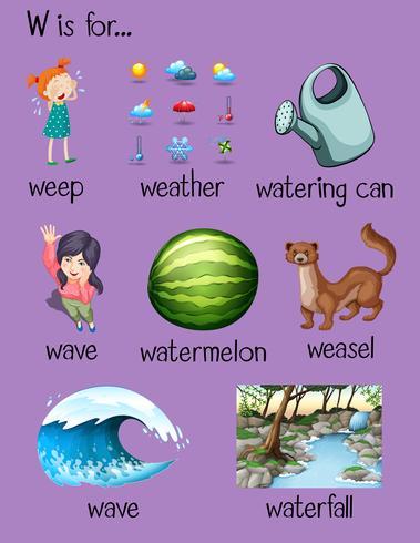 Viele Wörter beginnen mit dem Buchstaben W vektor