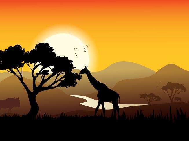 Afrikansk landskapsaffisch vektor