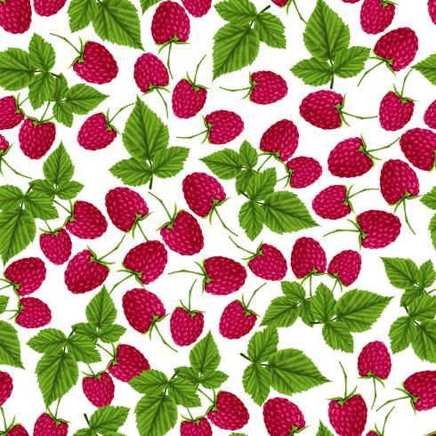 Raspberry sömlöst mönster vektor