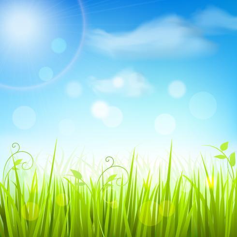 Vårgräsblå blå himmelsaffisch vektor