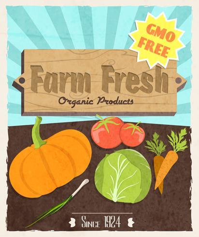 Gemüse Retro-Poster vektor