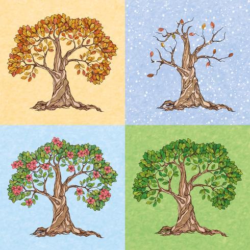 Baum mit vier Jahreszeiten vektor