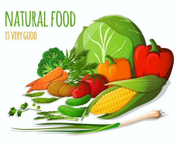 Gemüse noch leben vektor