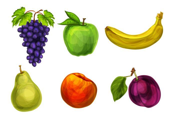 Samling av färska ekologiska frukter vektor