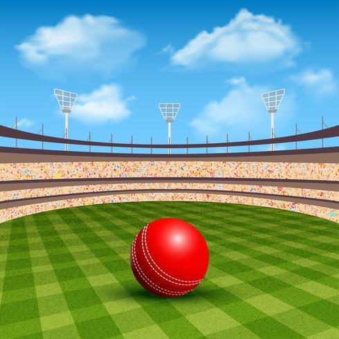 Stadion des Cricket vektor
